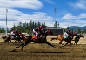 Horse Racing on the Rogue