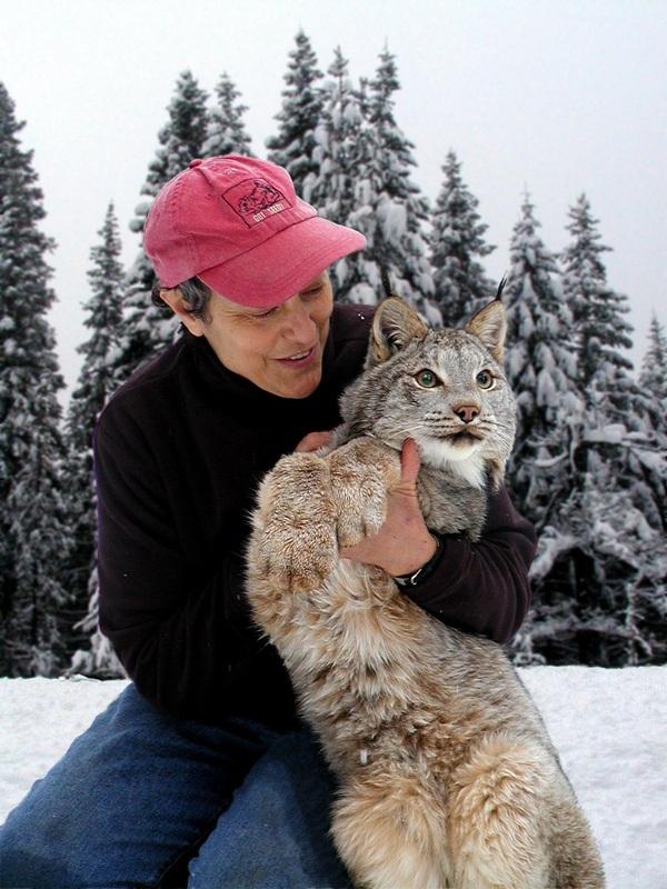 Ann Southcombe Wildlife