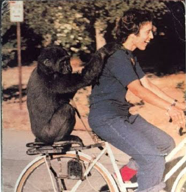 Ann and Gorilla on Bike